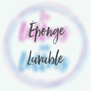 Eponge lavable